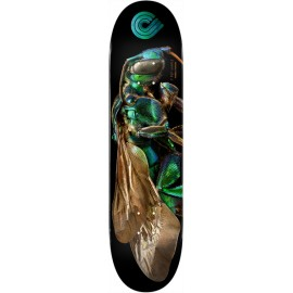 POWELL PERALTA biss orchid cuckoo bee 8
