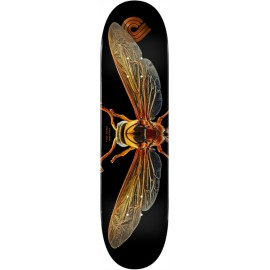 POWELL PERALTA biss potter wasp 8