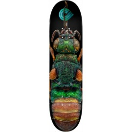 POWELL PERALTA biss ruby tailed wasp 8.5