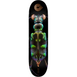 POWELL PERALTA biss tiger beetle 8.25