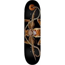 POWELL PERALTA biss marion moth 8.25